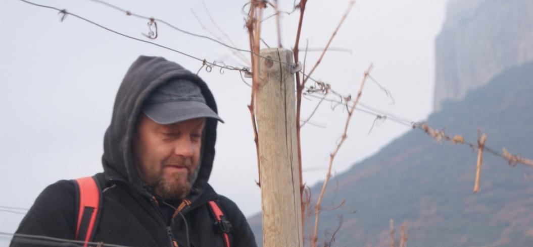 Emmanuel Briet - Parcelle Muscat Le Mazet - Pic Saint Loup - Décembre 2013